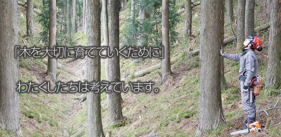 「木を大切に育てていくために」わたくしたちは考えています。