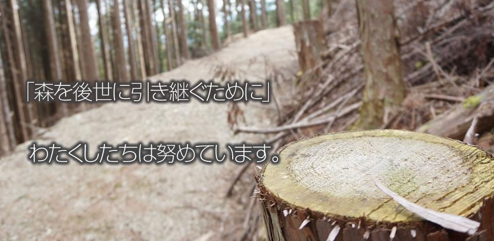 「森を後生に引き継ぐために」わたくしたちは努めています。