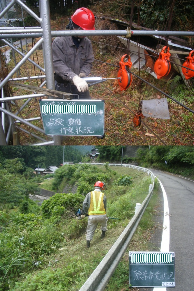 工事による伐採